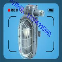 供应DGC36/127L(A)矿用隔爆型LED支架
