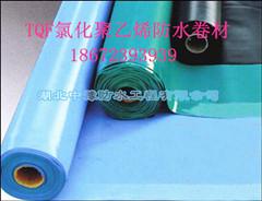TQF氯化聚乙烯防水卷材中豫防水值得信赖