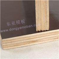 江门市东亚木业有限公司