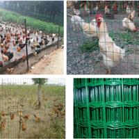 1.5m高养殖防护网给牲畜一个舒适美观的家