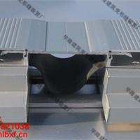 建筑变形缝盖板伸缩缝盖板地面不锈钢变形缝
