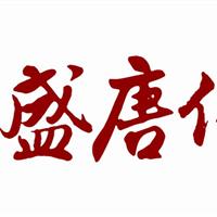 深圳盛唐伟业净水器火热招商 代理加盟 /净水器十大品牌
