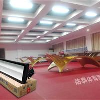 新款乒乓球室防眩灯具,乒乓球场专用灯