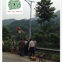 湖南衡阳太阳能路灯一般价位 衡阳路灯厂