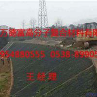 厂家供应海绵城市园林绿化专用渗排水片材