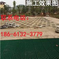 蚌埠植草格/有限公司