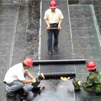供应防水弹性体SBS改性沥青防水卷材