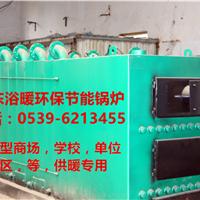 聚丰生物质燃气塑料烟筒锅炉
