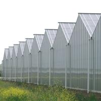 天津柯云生产pc阳光板耐力板蜂窝板。