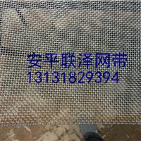 供应方眼网.胶囊设备专用网带