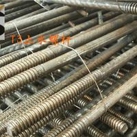 供应t3中牙止水螺杆厂家直销价格合理 批发