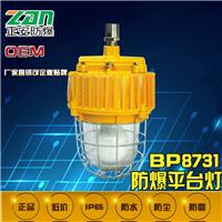 供应BPC8731/ON防爆平台灯