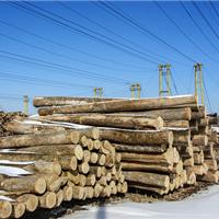 枫木运动地板厂家 枫木篮球运动木地板价格