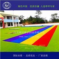 北京人工草坪厂家  河北人工草坪供应商
