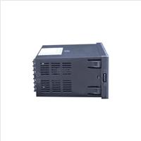 供应SWP-LK802-02-AAG-HL流量积算仪