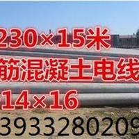 供应各种型号电线杆 电杆 水泥电线杆