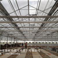 河北康柏宇厂PC耐力板建筑透明采光耐力板