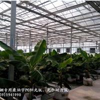 河北康柏宇厂供应温室保温防滴露专用阳光板