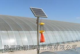 庆阳太阳能杀虫灯厂家