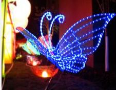 LED 蝴蝶灯