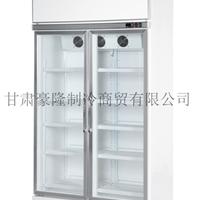 供应水果店冷藏展示柜