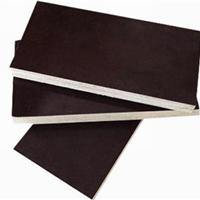 供应杨木多层板 临沂胶合板 贴面建筑模板