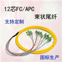 FC/APC��ģ12о��״β�˹�������1�צ�0.9