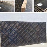 供应建筑模板/竹胶桥梁板/杨木板/木方直销