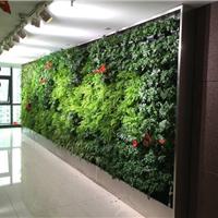 植物墙,仿真植物墙,无锡植物墙