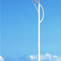 供应太阳能路灯新农村改造6米led路灯杆