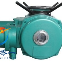DZW20-18/24多回转阀门电动执行器连接形式