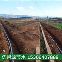供应烟台山地土豆滴灌工程安装价格