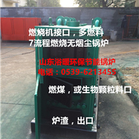 供应山东浴池环保卧式多燃料锅炉