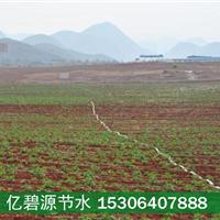 供应滨州土豆滴灌施肥一体化设备费用