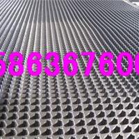 供应屋顶花园排水板【出售】绿化排水板