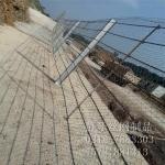 供应道路安全网 防异物入侵半钢性防护网