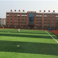 运动场地专用PE足球草篮球草门球草人造草坪