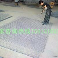 平顶山铅丝石笼网-8*10cm格宾石笼网厂家