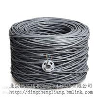 供应阜新六类网线厂家13910189994