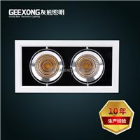 供应COB豆胆灯20W25W30W双头LED斗胆灯