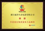中国普拉格奖竞争力品牌奖