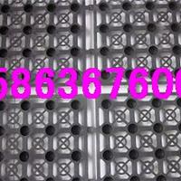 供应【环保】绿化蓄水板【隔根层】排水板