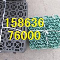 供应蓄排水板多少钱一平方地下室蓄排水板