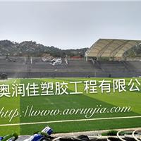 东营足球场人在草坪 人工草坪