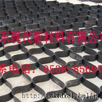 挡土墙专用蜂巢TGGS200-400新型土工格室