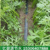 供应山东胡萝卜滴灌施肥一体化设备价格