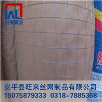 圈地铁丝网 玉米电焊网 镀锌铁丝价格