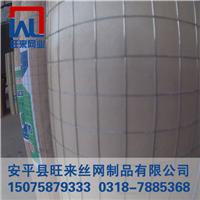 钢筋网片价格 苗床网片 外墙保温电焊网