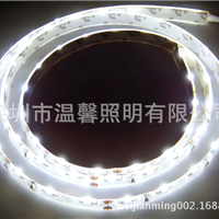 供应IP65滴胶防水正白贴片式335 60灯
