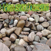 供应彩色石子 优质机制鹅卵石 肝红石子